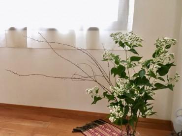 白花フジバカマ と ミズヒキ の祭壇。