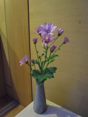 まだ、花の少ない時期ですが、マーガレットやこのキク科の花が咲きました。