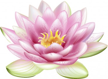 flower0831